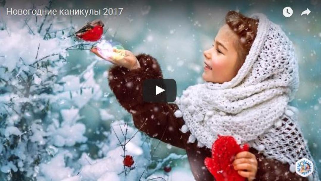 priglashaem-vas-posetit-fotovystavku-novogodnie-kanikuly-2017