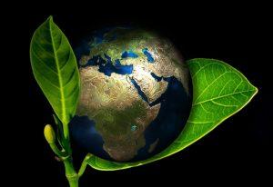 Всероссийский конкурс для педагогов, родителей и детей дошкольного возраста «Эко-планета»