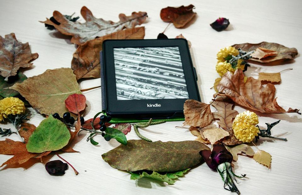 Электронная книга – помощник педагогу?