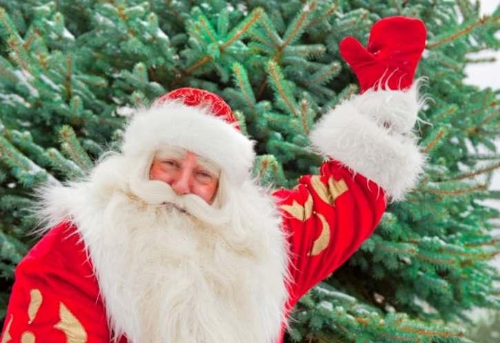 Дед Мороз мечтает в Великом Устюге построить школу олимпийского резерва