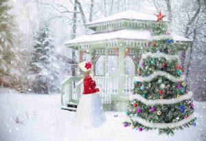 """Фестиваль новогодних фотографий """"Наша елка лучше всех"""""""