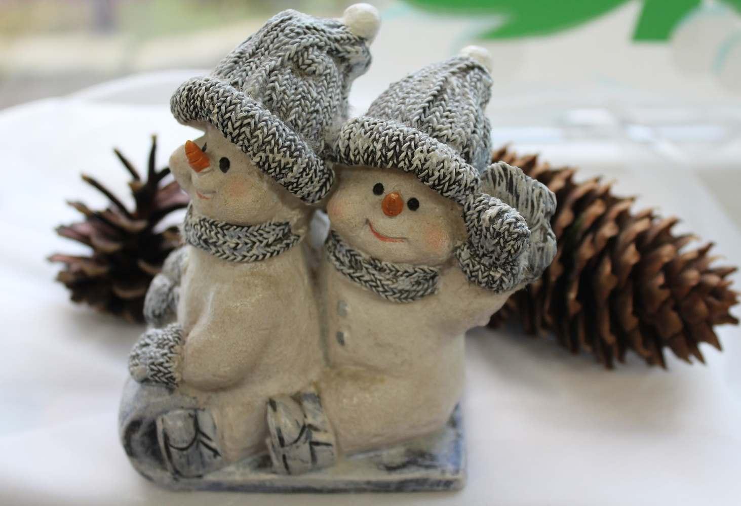 Konkurs-na-luschuju-zimnuju-vystavku-dou-prodolzhaetsya