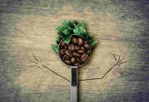 """Приглашаем на мастер-класс """"Новогодние поделки с кофейными зернами"""""""