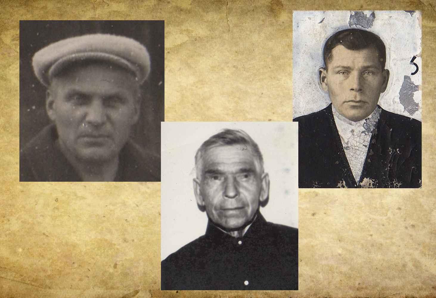 dimovidovy-geroicheskaya-istoriya-semi