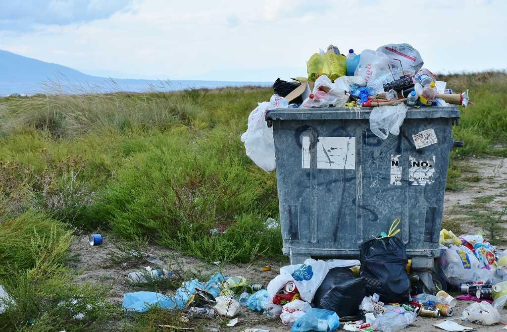 мусор-в-парке