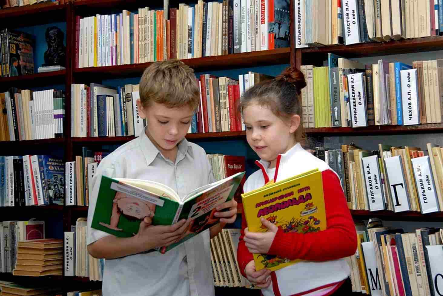kak-organizovat-issledovatelskuyu-deyatelnost-na-urokah-russkogo-yazyka-i-literatury