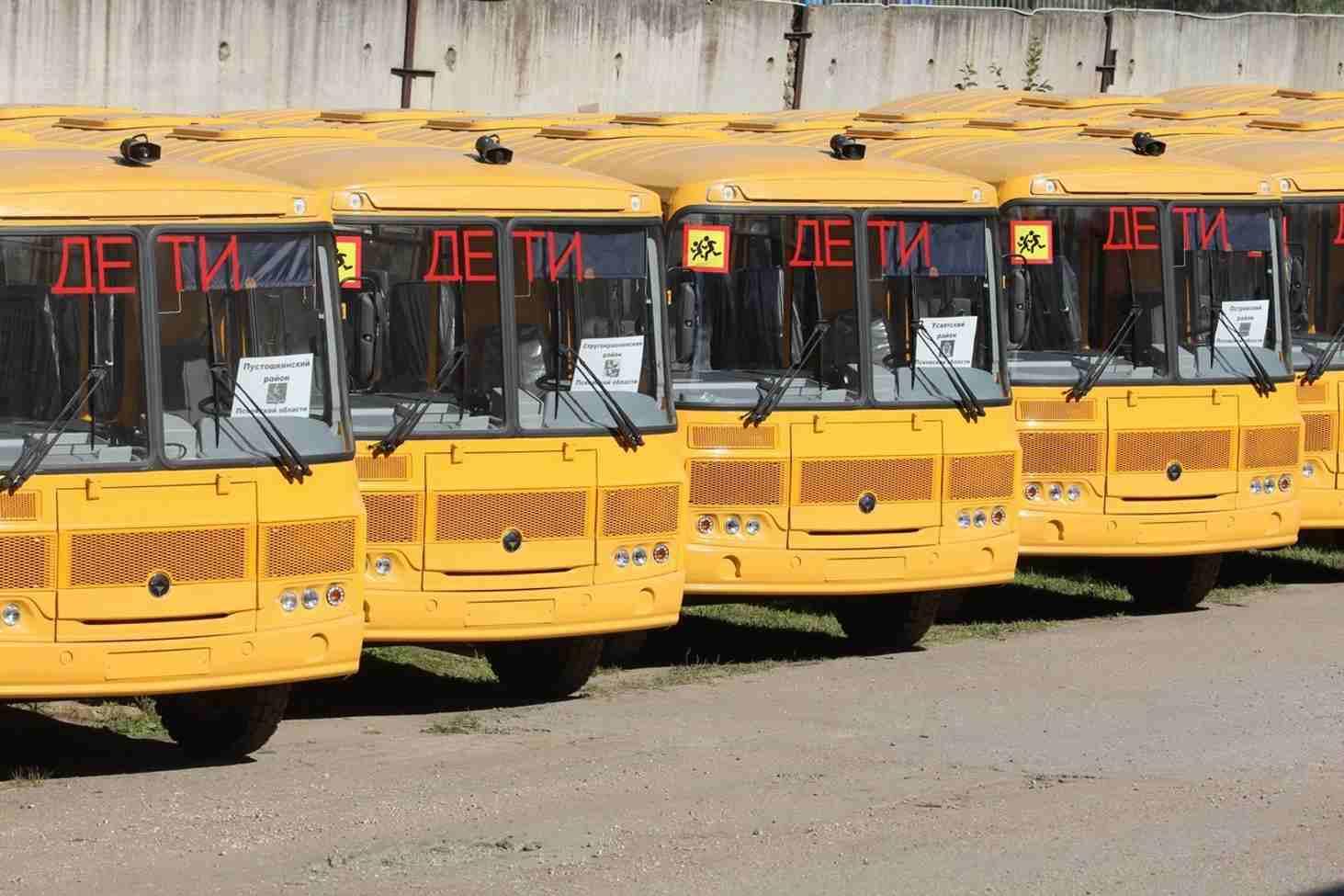 zapret-na-perevozku-detej-v-staryh-avtobusah-otlozhili-do-2020-goda