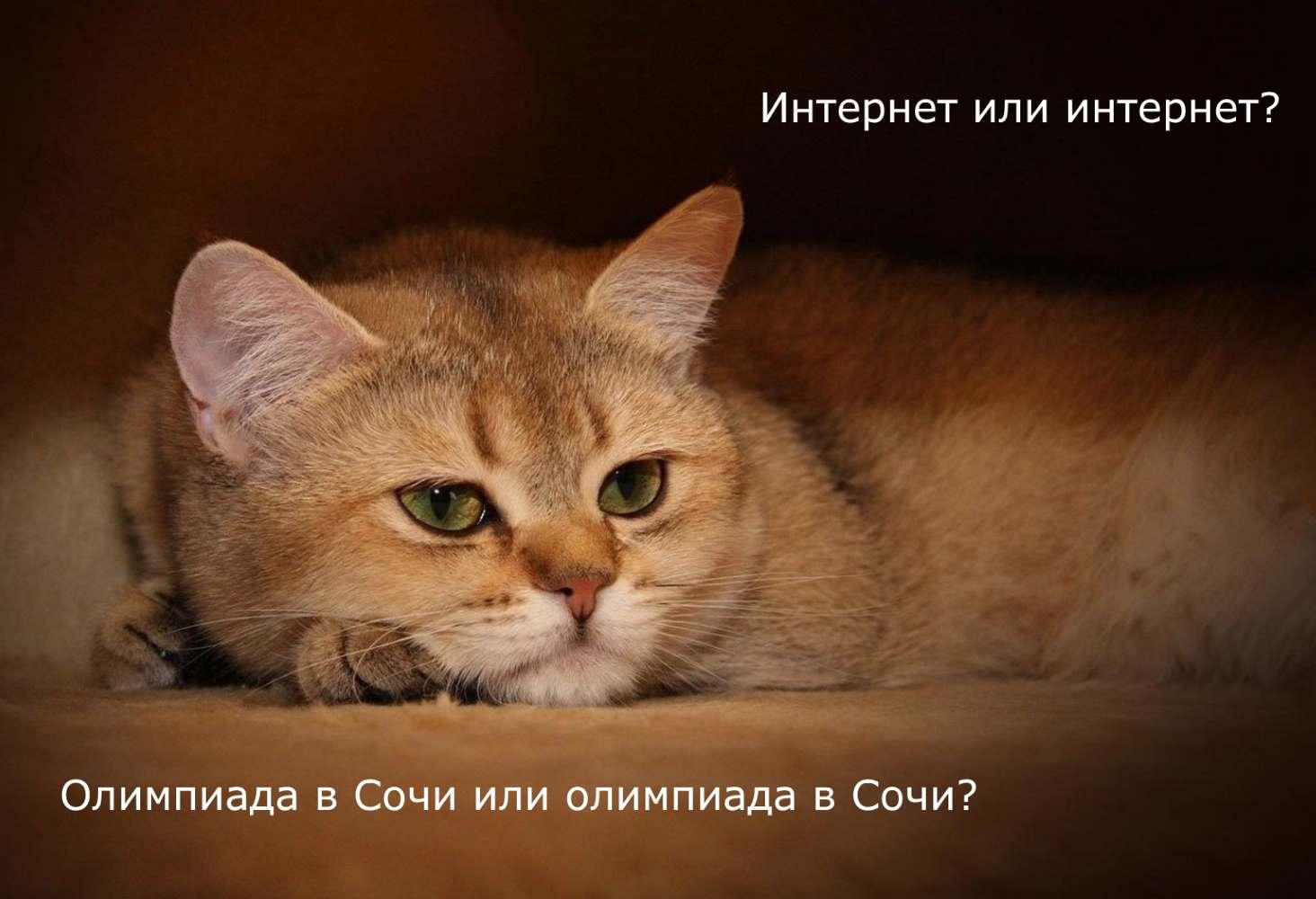 test-kakie-iz-etih-slov-pishutsya-s-bolshoj-bukvy