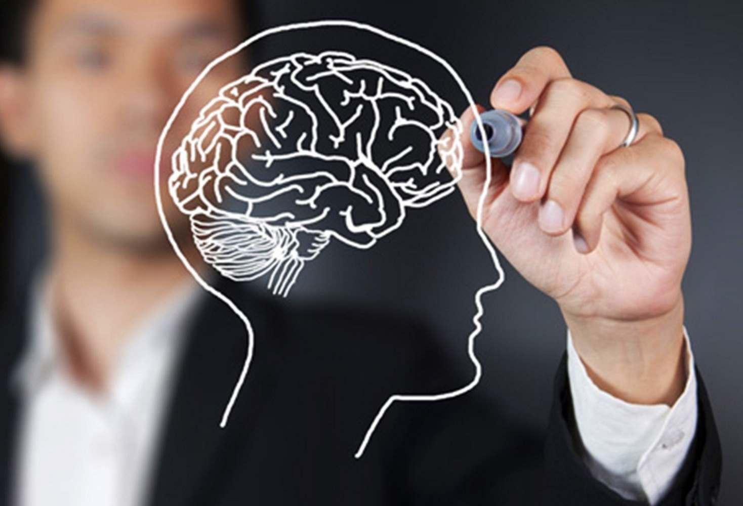 5-faktov-o-mozge-kotorye-mogut-izmenit-vashu-zhizn