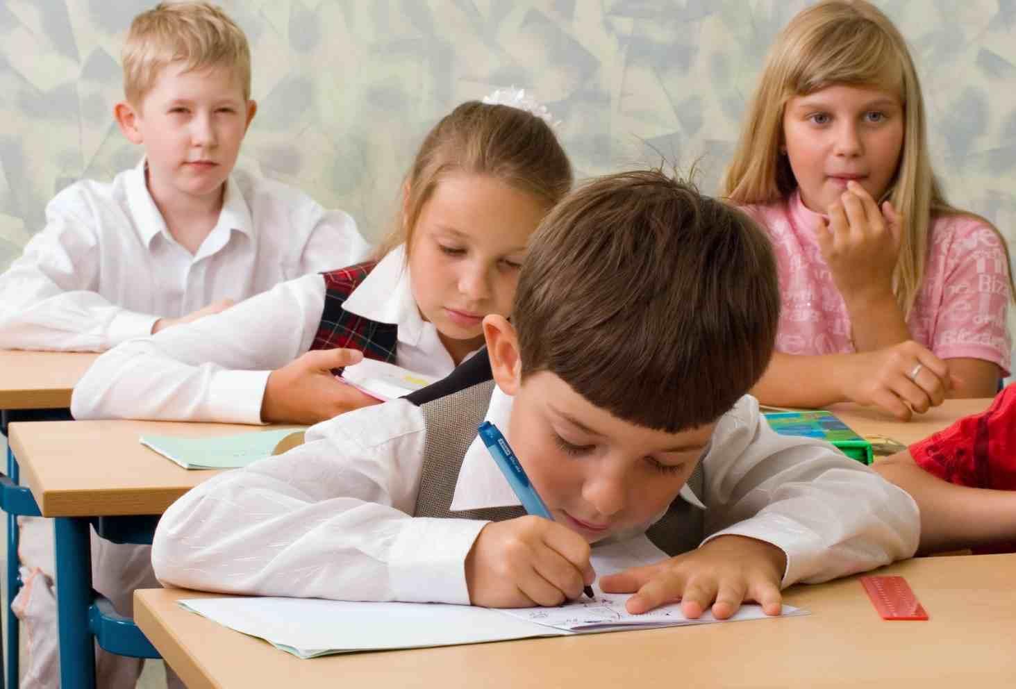 obshhestvennaya-palata-podvedet-itogi-reformy-shkolnogo-obrazovaniya