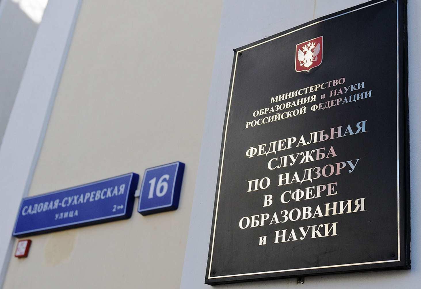 svetlana-kochetova-stala-novym-zamestitelem-rukovoditelya-rosobrnadzora