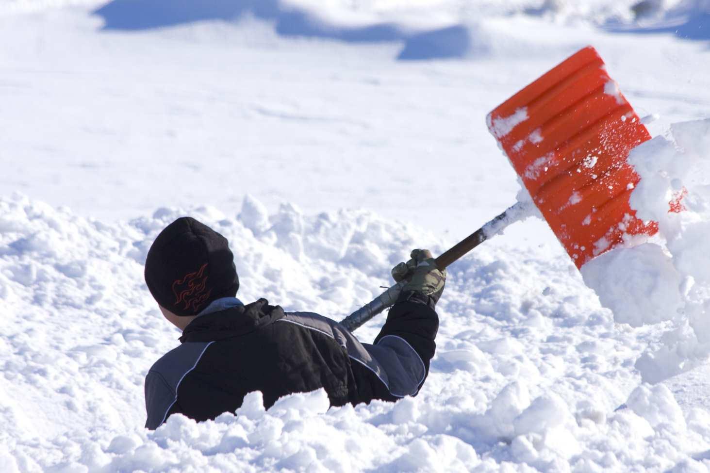 v-peterburge-chinovniki-vyzvali-uchitelej-na-uborku-snega-v-vyhodnye