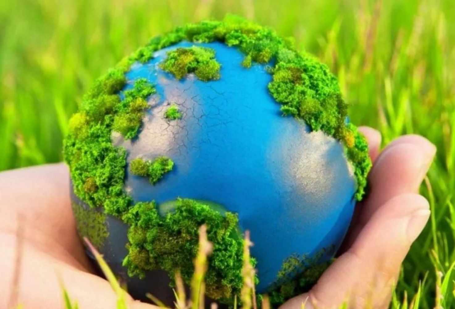 kak-nauchit-detej-berezhnomu-otnosheniyu-k-ekologii