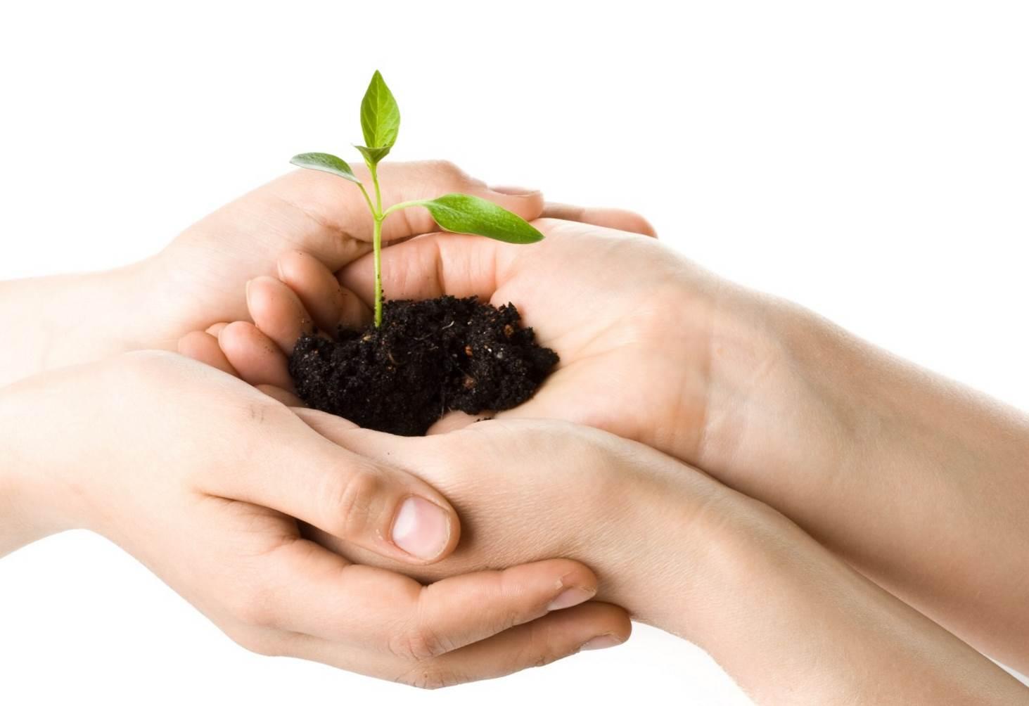 novye-kursy-povysheniya-kvalifikatsii-po-ekologii-i-skidki-v-chest-dnya-ekologicheskih-znanij