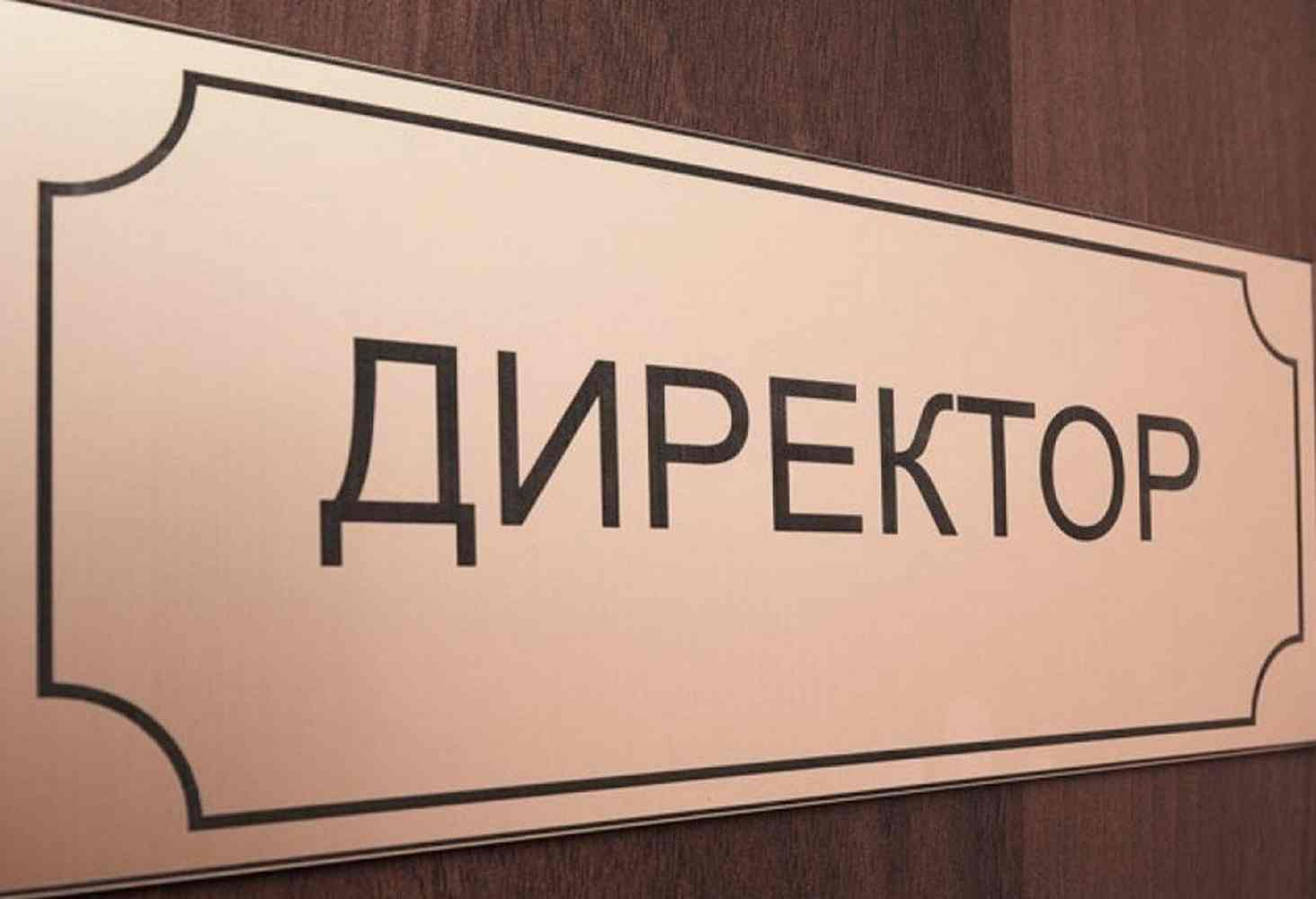 direktora-rossijskih-shkol-schitayut-chto-im-ne-hvataet-kompetentsij-rukovoditelya